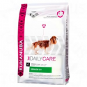 Eukanuba Daily Care Senior 9+ MEGA-PAK 2x12kg