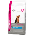 Eukanuba Adult York Breed 2kg