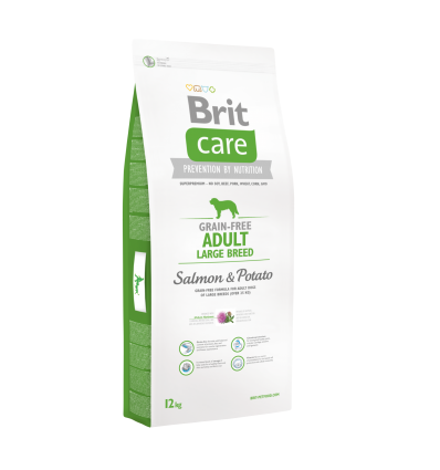 Brit Care Adult Large Salmon&Potato
