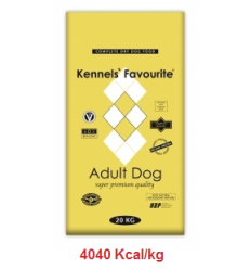 KENNELS' FAVOURITE Adult Dog